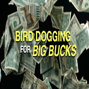 Bird Dogging - Dallas REIG